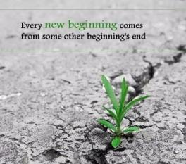 new-beginnings-quote-1